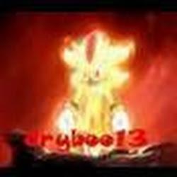 dryboo13