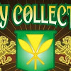 INITYCOLLECTIVE