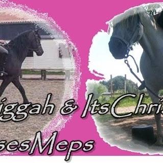 HorsesMeps