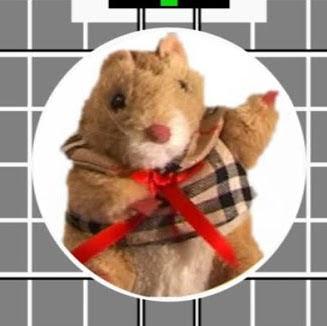 Squeak Hamster