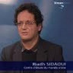 Riadh Sidaoui