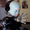 iCub HumanoidRobot