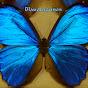 BlaueLagunen