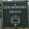 strawberryfieldsnyc