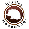 Riddle's Hedgehogs