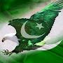 Pakistani Tutorials