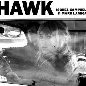 HAWK8454