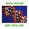 adn-dna.net