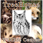TreeHouse Wildlife Center