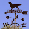 ArtemisGoldKennel