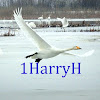 1HarryH, Nature Relaxation Videos