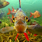 underwaterireland Youtube Channel
