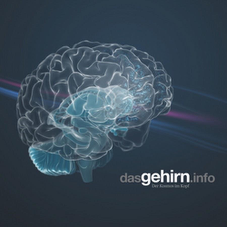 dasGehirnInfo