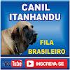 Itanhandu Fila Brasileiro