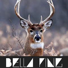 BELLA PING MUSIC CHANNEL