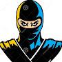 Ninjaforious Fr