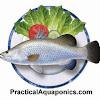 Murray Hallam's Practical Aquaponics.