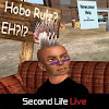 Second Life Capture