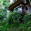 Natura Villa Ubud