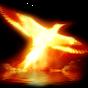 Phoenix Nova