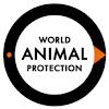 World Animal Protection Canada