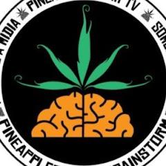 Pineapple StormTV