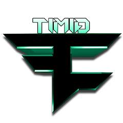 TimidHouseCat