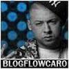 BlogFlowCaro