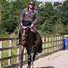 J.P Equestrian