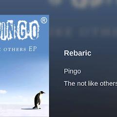 Pingo - Topic