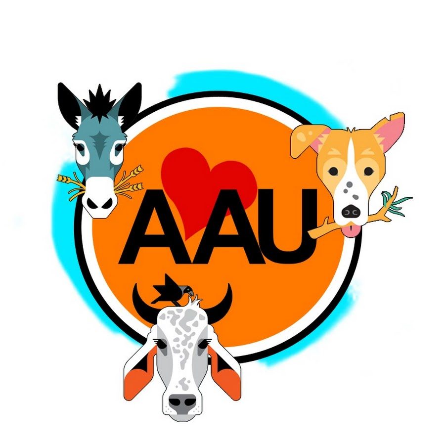 animal aid unlimited india   youtube