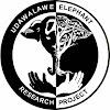 UdawalaweElephants