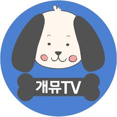 개뮤 TV