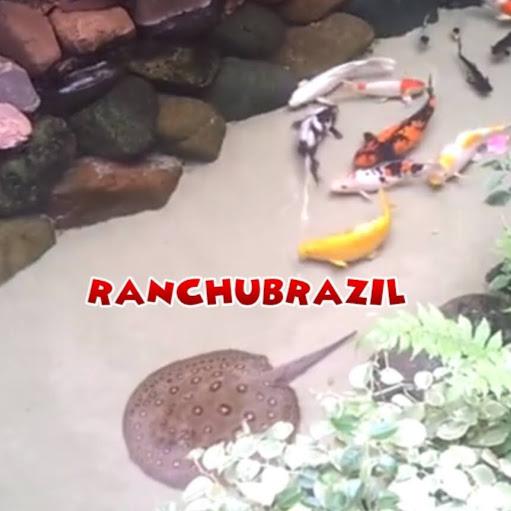 RANCHUBRAZIL