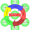 Oracle ERP Apps Guide