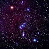 Orion Contactee