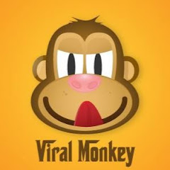 Cover Profil Viral Monkey