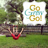 gograhamgoblog
