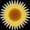 sunfloweroutdoor