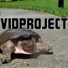 vidproject