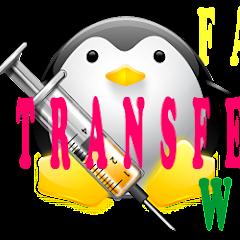 Factor de transferencia web