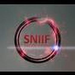 sniifelectro