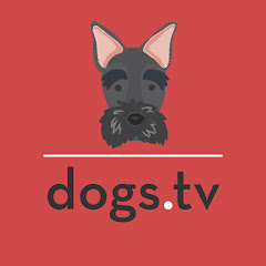 thedogworldtv