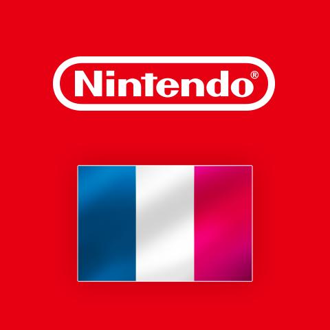 Resultado de imagem para Nintendo France