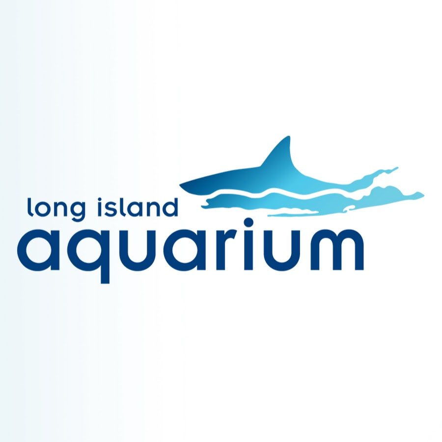 Channel  News Long Island