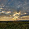 Yasser Amin