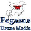 Pegasus Drone Media