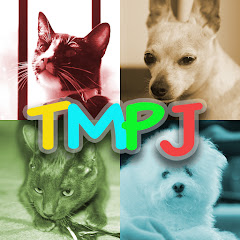 TMPJ and Coons