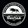 TaurusAmp