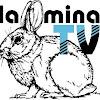 LaMinaTribeTV